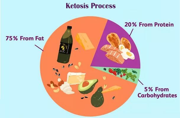 ketosis process banner